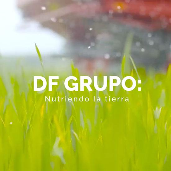 Grupo DF