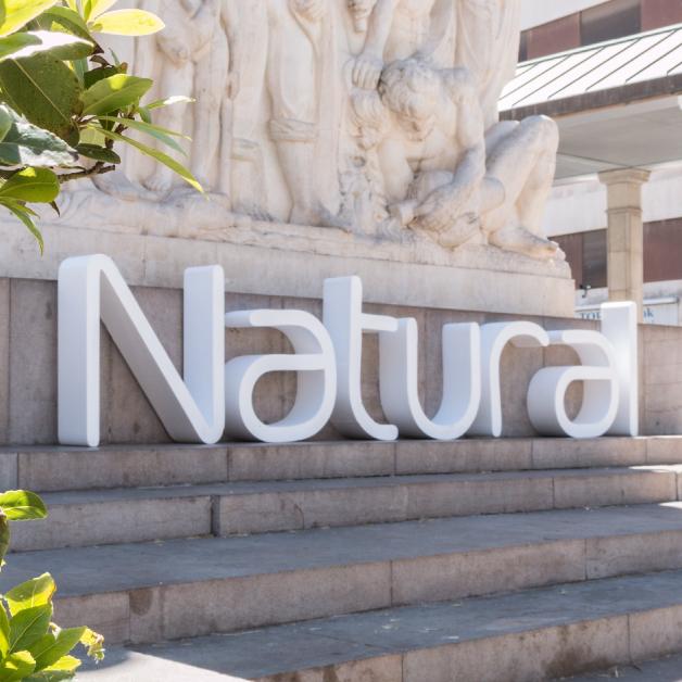 Feria-Natural